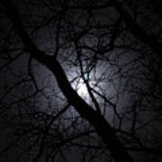 Mystical Moon Art Print