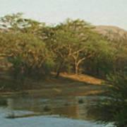 Namibian Waterway Art Print