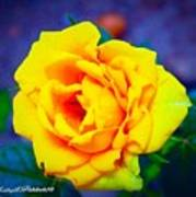 Nana's Yellow Rose Art Print