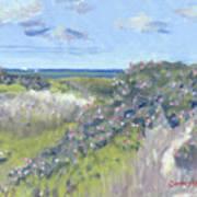 Nantucket June Dunes I Art Print