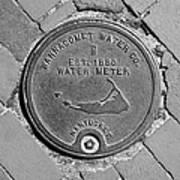 Nantucket Water Meter Cover Art Print