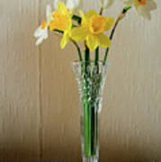 Narcissus In Glass Vase Art Print