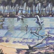 Narrabeen Lakes 2 Art Print