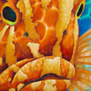 Nassau Grouper  Art Print by Daniel Jean-Baptiste