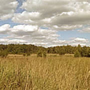 Natural Meadow Landscape Panorama. Art Print