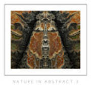Nature In Abstract 3 Poster Art Print