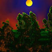 Nature In Full Moon  Art Print