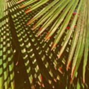 Nature Up Close 6 Art Print