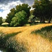 Nature Walk Ridgefield Washington Art Print