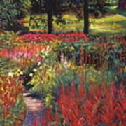 Nature's Dreamscape Art Print