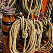 Nautical Knots 16 Art Print