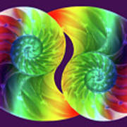 Nautilus Rainbow Art Print