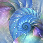 Nautilus Shells Blue And Purple Art Print