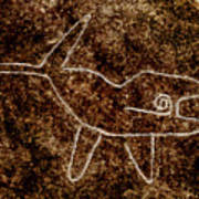 Nazca Killer Whale Art Print