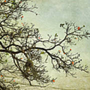 Nearly Bare Branches Art Print