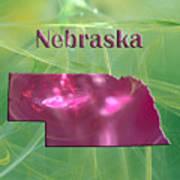 Nebraska Map Art Print