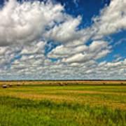 Nebraska Wheat Fields Art Print