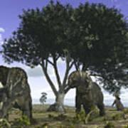 Nedoceratops Graze Beneath A Giant Oak Art Print
