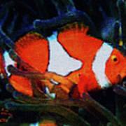 Nemo's Marlin Art Print