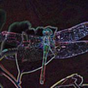 Neon Dragon Fly Art Print