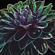 Neon Garden Dahlia I Art Print