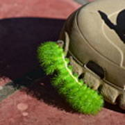 Neon Geen Caterpillar Loves Crocs Art Print