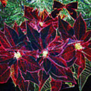 Neon Poinsettias Art Print