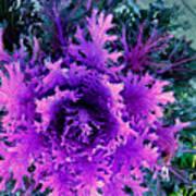 Neon Purple Art Print