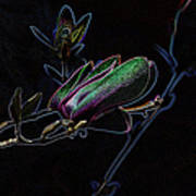 Neon Tulip Tree 5090 Art Print