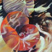 Neptunea Art Print