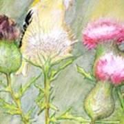 Nest Fluff Art Print
