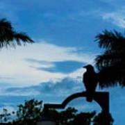Nevermore In The Tropics Art Print