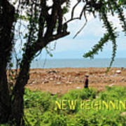 New Beginnings Art Print