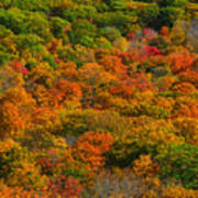 New England Fall Foliage Peak  Art Print
