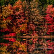 New England Fall Foliage Reflection Art Print