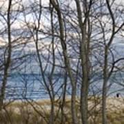 New England Massachusetts Beach  Scene Art Print