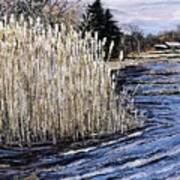 New England Pond Art Print