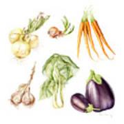 New Farmers Market Study Art Print
