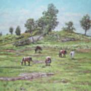 New Forest Lyndhurst Hampshire Art Print