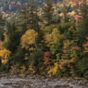 New Hampshire Color Along The Swift River Art Print