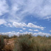 New Mexico Sand Grass Sky Art Print