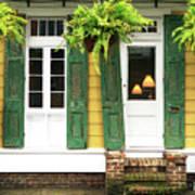 New Orleans Row House Plants Art Print
