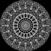New Vision Black And White Art Print