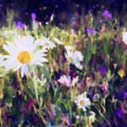 New York Wildflowers Xxv Art Print