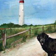 Newfy At Cape May Light  Art Print