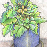 Nice Plant Art Print