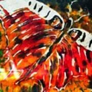 Night Butterfly Art Print