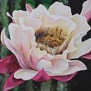 Night Cactus Art Print