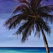 Night On The Beach Art Print