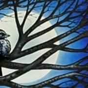 Night Perch Art Print